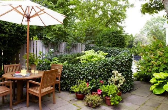 ایده خلاقانه برای تزیین حیاط